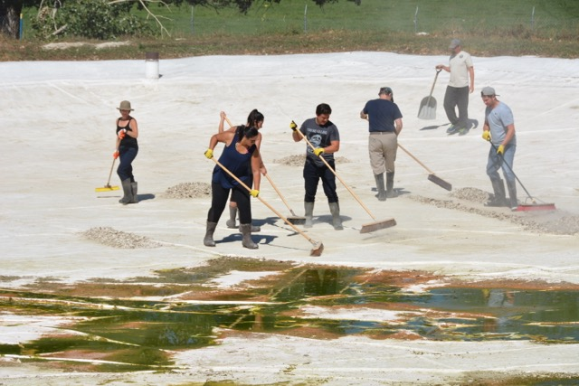 Corporate Social Responsibility Event Colorado Trout Restoration Project Clean-Up
